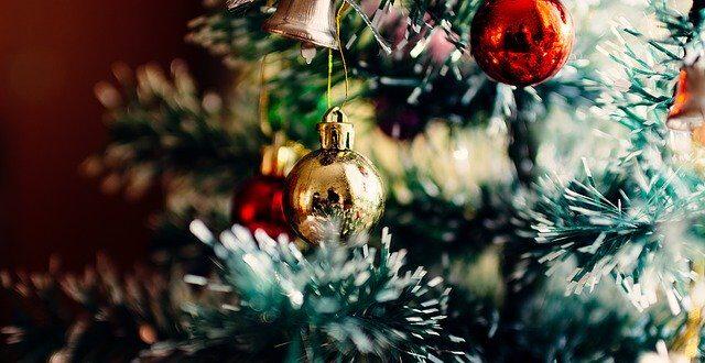 Un arbre chargé de cadeaux