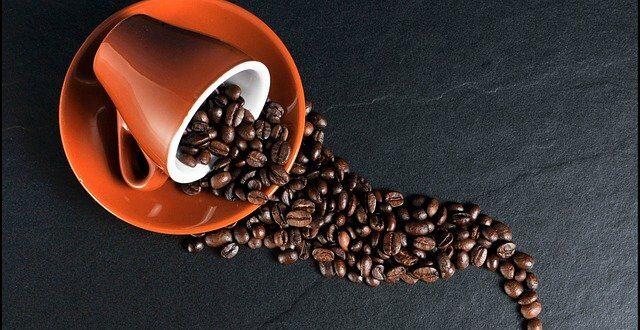 Du café bon pour votre jardin
